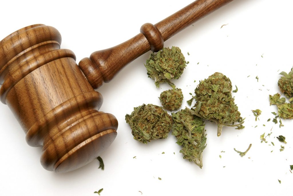 cannabis law driving